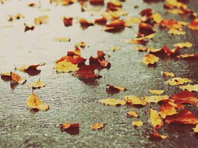 2016最新版微信伤感昵称 散乱的记忆_伤感网