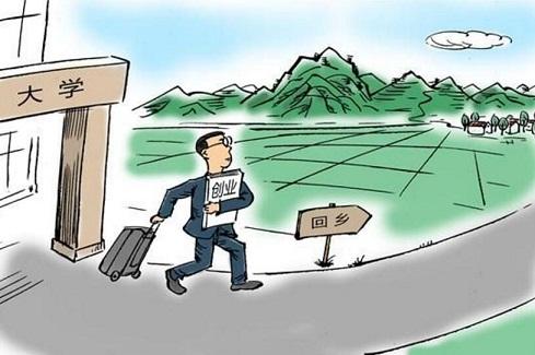 就业感悟日志:努力不一定成功,不努力一定不成功